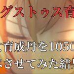 【放置少女】アウグストゥスに仙女育成丹を1050個食べさせてみた#放置少女